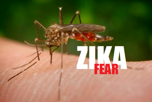 #ZikaVirus: What will likely spread faster?