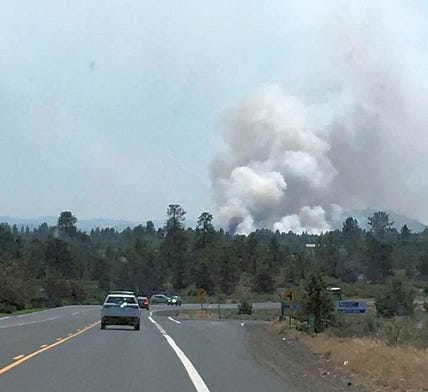 Would more logging mean fewer big wildfires?