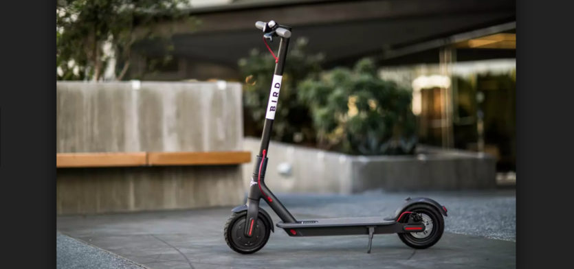 What do you think of the Bird scooters?