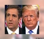 Do you think Michael Cohen pled guilty for a reduced sentence?