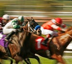 Should the winner of the Kentucky Derby have been disqualified?