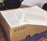 Should the city send out letters for rental inspections?