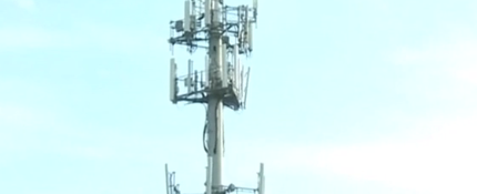 Do you believe cell phone towers are harmful to your health?