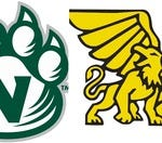 Green and white, or black and gold?