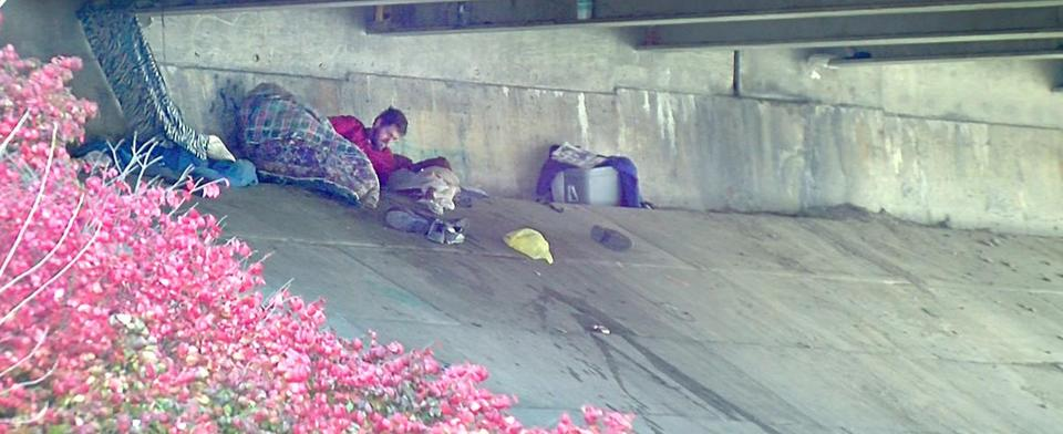 Do you agree with banning homeless encampments in public places?