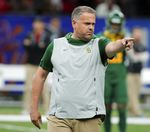How will Matt Rhule do for the Carolina Panthers?