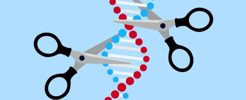 Where do you stand on CRISPR and DNA editing?