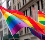 Should homophobia be a crime?