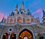 Would you pay over 200$ a day for Disney World?