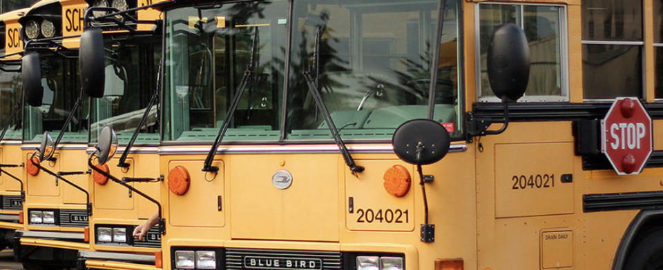 Do you think school buses should have seat belts?
