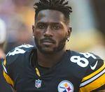 Should the Steelers bring Antonio Brown back?