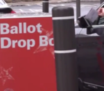 Did you vote in the primary election?