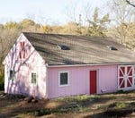 Would you have a pink shed at your house?
