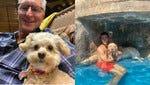 Doge SquareOff:  Tuck (left) vs Beau (right)