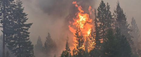 Are you concerned we're going to have a catastrophic fire season in Central Oregon?