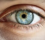 Would you rather lose your sight or your memories?