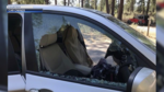Have you had your car broken into at a trailhead?