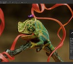 Are you looking to try out Adobe's substance painter?