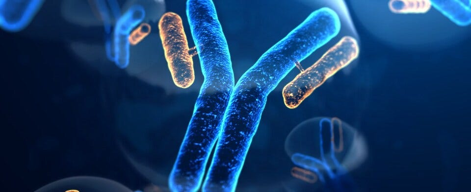 Are you interested in getting a COVID-19 antibody test?