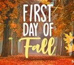 It's officially autumn! How do you feel about heading into the fall season?